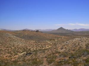 Desert paths