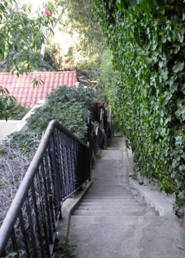 Whitley Terrace Stairs