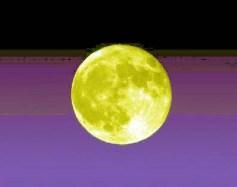 moonb